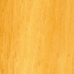 Oak Tasmanian